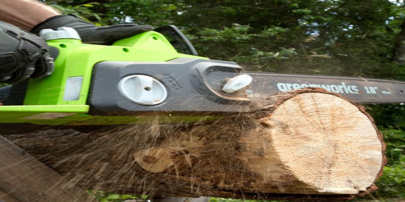 Best Electrical Corded chainsaws 2021